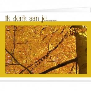 Anam-Design-DenkenAan1VOORKANTTemplForWeb