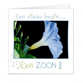 Anam-Design-Zoon1VOORKANTTemplForWeb