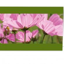 Roze Bloemen(UITVERKOCHT!)