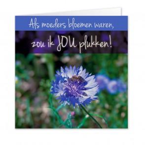 Anam-Design-Moeder2VOORKANTTemplForWeb