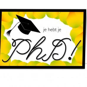 Anam-Design-PhD2GeslaagdVOORKANTTemplForWeb